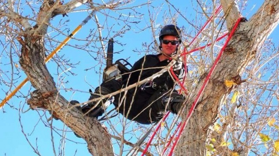 Need a dead tree removed? We will go to any height for you!